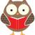 Teacher's Strike Owl